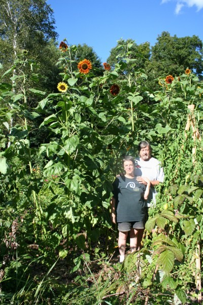 Richard and Penny With Sunflowers