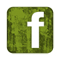 Green Facebook Page Button